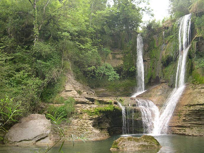 bosques-valle-mena