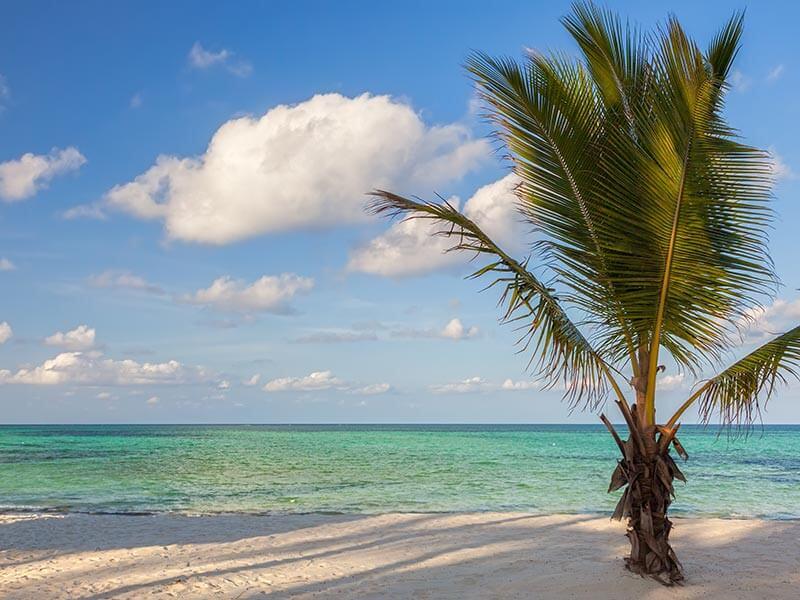 playa-zanzibar-tanzania
